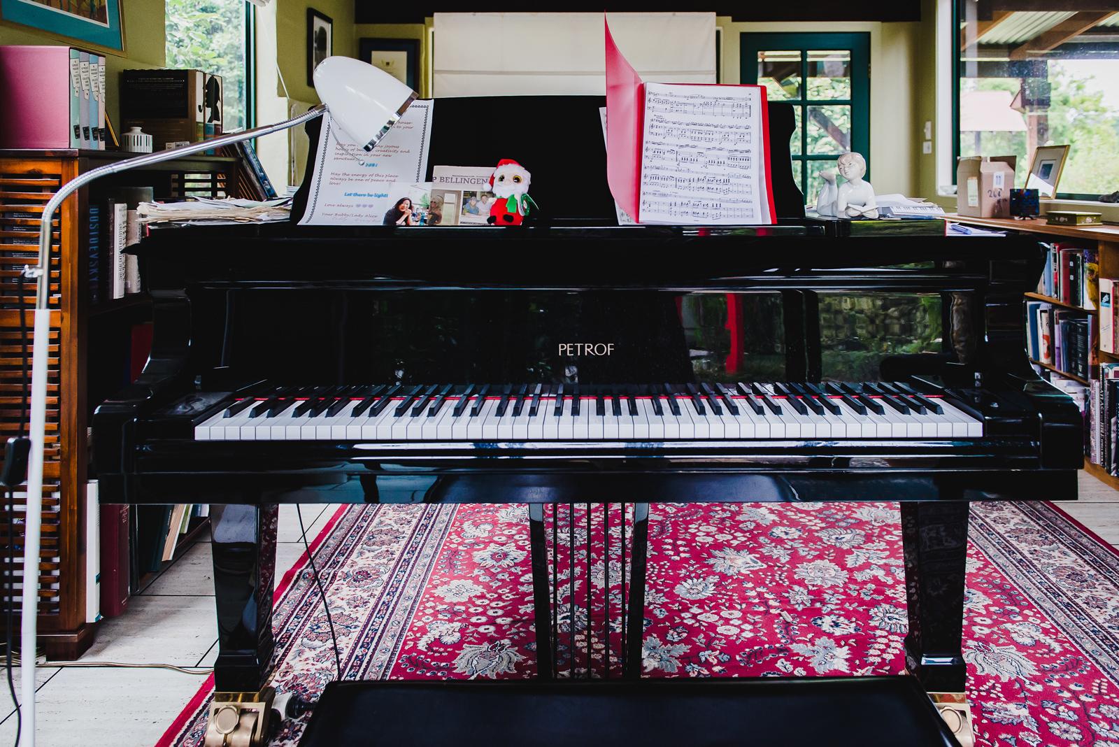 david's piano