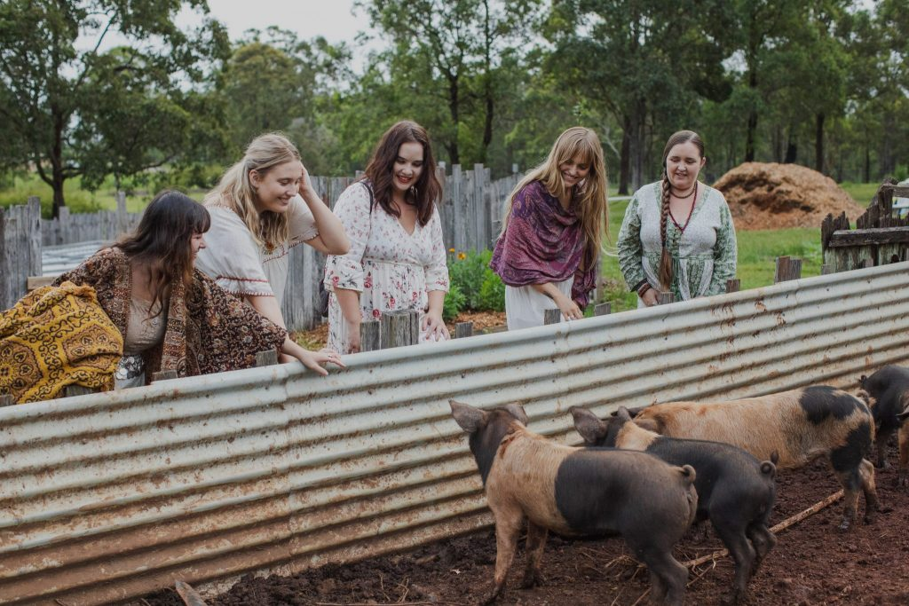 Five young women looking at small brown pigs