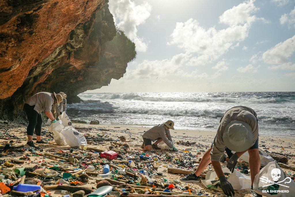 People collecting plastic waste on a beach